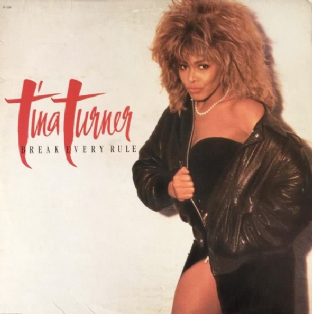 Tina Turner ‎- Break Every Rule (LP) (G-VG/G++)